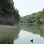 Kayaking the Chattahoochee