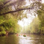 Scenic Etowah River