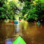 Chestatee River Kayaking